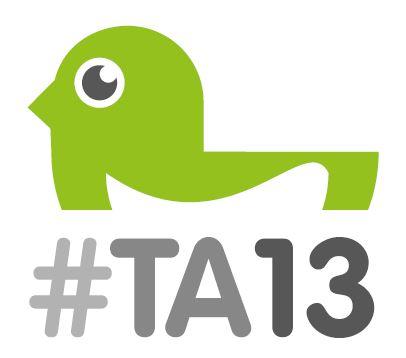 ta13 logo