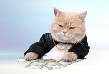 fare soldi big money business